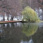 Foto : Jan Čížek